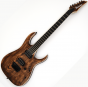 Ibanez RGAIX6U-ABS RG Iron Label Series Electric Guitar in Antique Brown Stained RGAIX6UABS