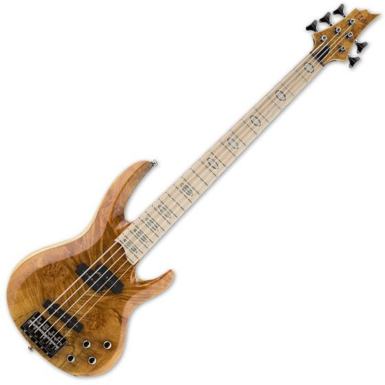 ESP LTD RB-1005BM HN 5-String Electric Bass Guitar in Honey Natural LRB1005BMHN