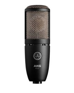 AKG P220 High-Performance Large Diaphragm True Condenser Microphone sku number 3101H00420