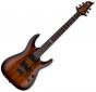 ESP LTD H-101FM Flamed Maple Top Electric Guitar Dark Brown Sunburst LH101FMDBSB
