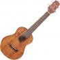 Takamine GUC1 Concert Acoustic Ukulele Natural TAKGUC1