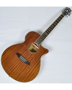 Ibanez AEG12II-NT AEG Series Acoustic Electric Guitar in Natural High Gloss Finish AEG12IINT