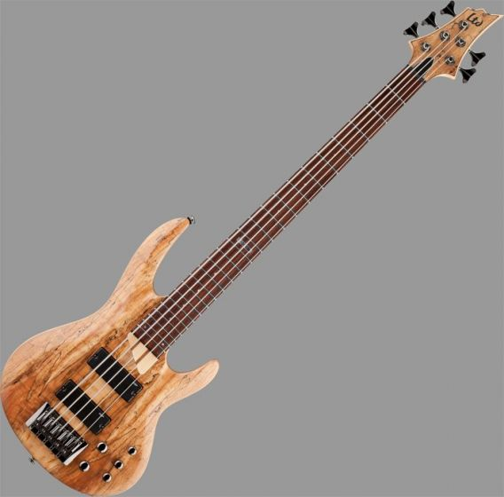 ESP LTD B-205SM Bass Guitar in Natural Stain Finish
