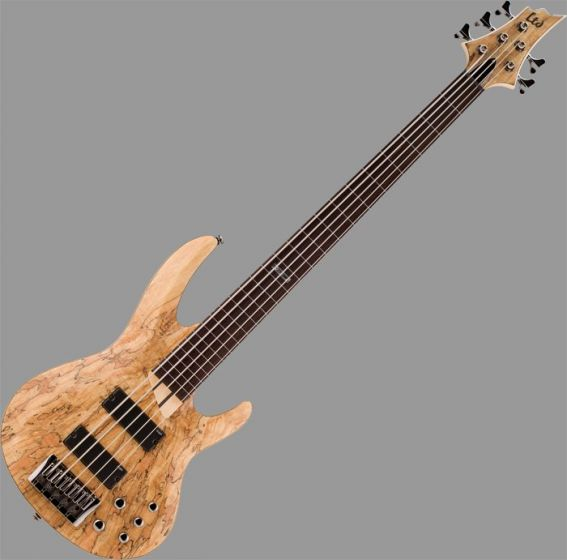 ESP LTD B-205SM Fretless Bass Guitar in Natural Stain Finish
