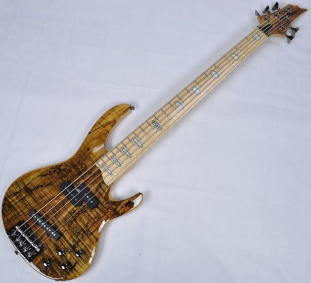 ESP LTD RB-1005SM 5-String Electric Bass Guitar in Natural Finish