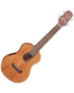 Takamine EGUC1 Acoustic Electric Concert Ukulele Natural Satin TAKEGUC1