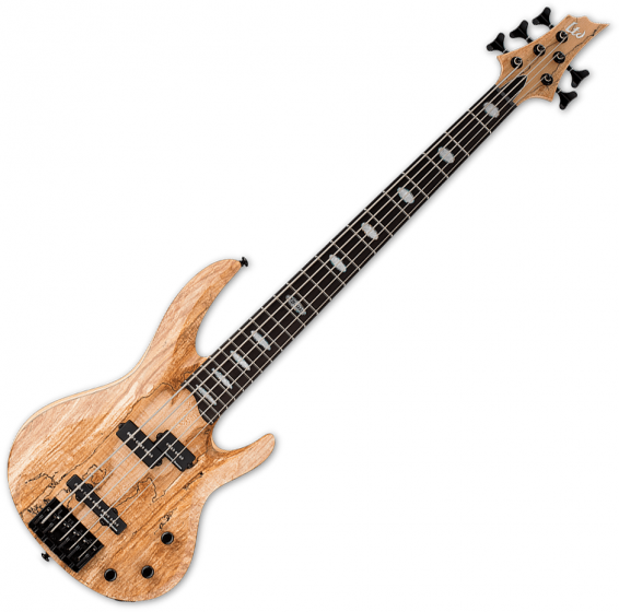 ESP LTD RB-1005SM 5 String Electric Bass Natural Satin B Stock